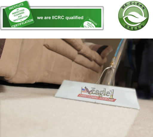 eagle1 iicrc green carpet cleaning Reno Nevada