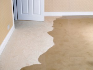 water-damage-restoration-northern-nevada